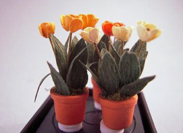 "af07 1/2"" scale colorful tulips in a pot"