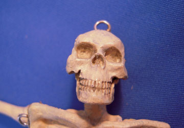 "jk44 1"" scale j kendall miniature skeleton"