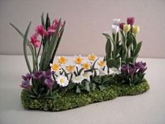 "Falcon 1"" Scale Tulip Landscape Garden Flowers"