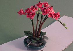"Bright deLights 1"" Scale Pink Orchid Arrangement"