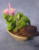 "Bright deLights 1"" Scale Pink Table Top Planter"