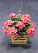 "Bright deLights 1"" Scale Pink Geraniums in Hanging Planter"