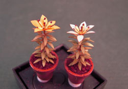 "Artistic Florals Hand Crafted 1/2"" Scale Set Of Two Potted Orange Lilies"