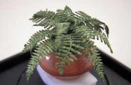 "Artistic Florals Hand Crafted 1/2"" Scale Potted Fern"