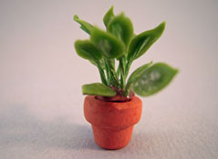 "1/2"" Scale Potted Diefenbachia Plant"