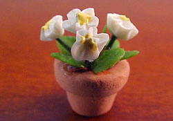 "1/2"" Scale Potted White Flowers"