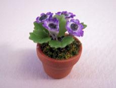 Potted Purple Corn Plant 1:24