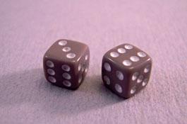 """1"""" Scale Miniature Gray Dice"""