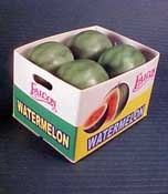 "1"" Scale Case Of Watermelons"