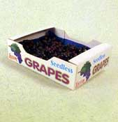 "1"" Scale Case Of Seedless Grapes"