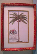 "McBay Miniatures 1"" Scale Beautiful Royal Palm Framed Print"