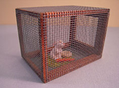 "1"" Scale Hand Crafted Taylor Jade Bunny Hutch"
