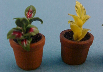 "1/2"" Scale set of three potted plants miniature 5/8"" High"