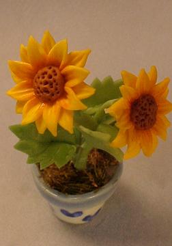 a019sunflowers