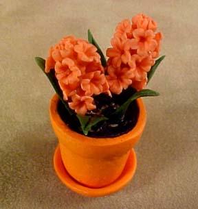 ab8180pkflowers
