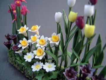 "ab8218s 1/2"" scale tulip garden flowers"