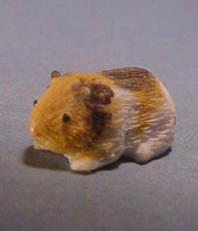 a2900 guinea pig