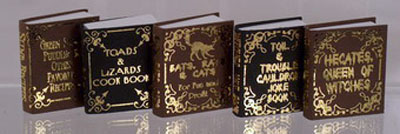"1"" scale Foltz Distribution Halloween Witch Book Set"