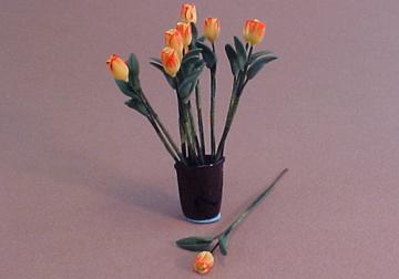 r581flowers
