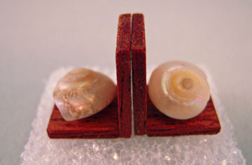 Wendy's Miniatures Handcrafted Umbonium Shell Bookends 1:12 scale