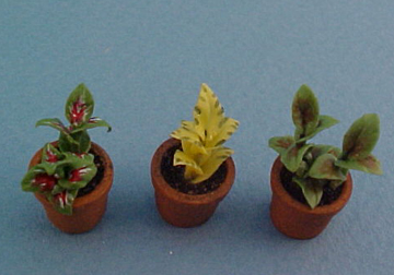 Falcon Set of Three Potted Plants 1:24 scale