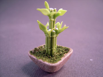 Bright deLights Lucky Bamboo Plant 1:12 scale
