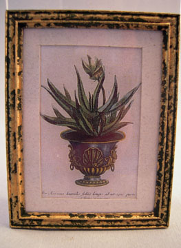 McBay Miniatures Regal Planter Framed Print 1:12 scale