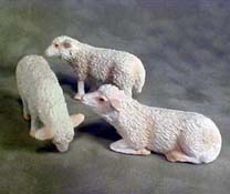 "Falcon 1/2"" Scale Set Of Three Darling Sheep"