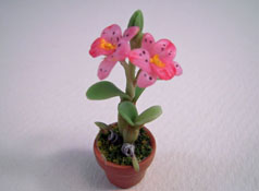 Potted Tall Pink Orchid Plant 1:24