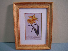 "McBay Miniatures 1"" Scale Yellow Daffodil Framed Print"