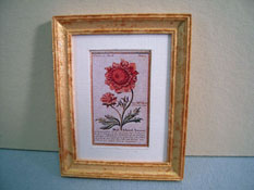 "McBay Miniatures 1"" Scale Red Flower Framed Print"